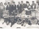 kabinet ampera